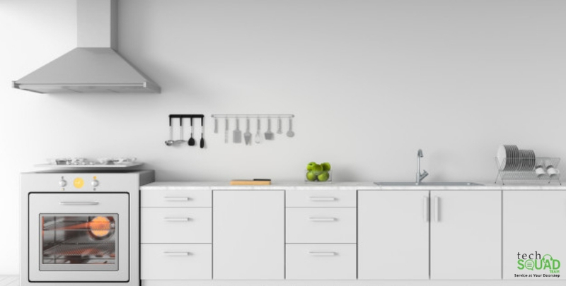 Do You Need To Maintain Your Kitchen After Pest Control?