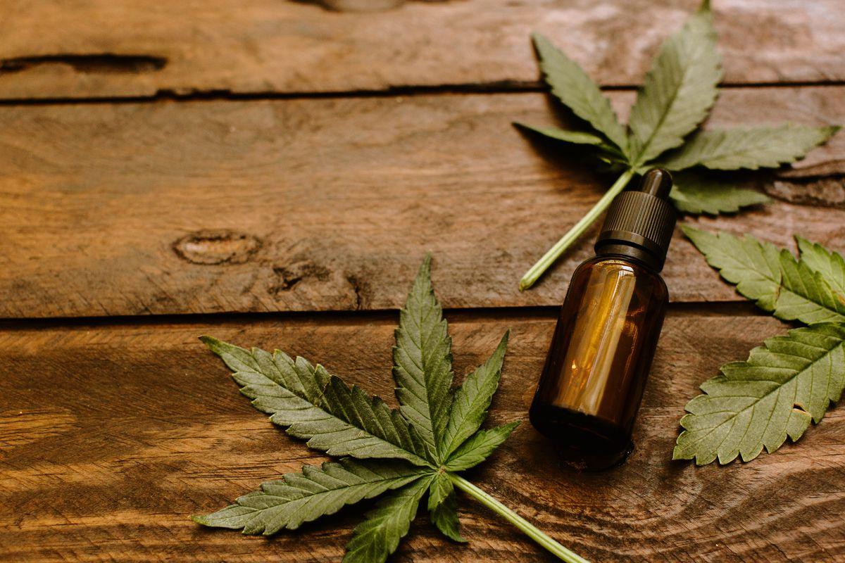 CBD Marijuana Oil: Proven Indications for your Health