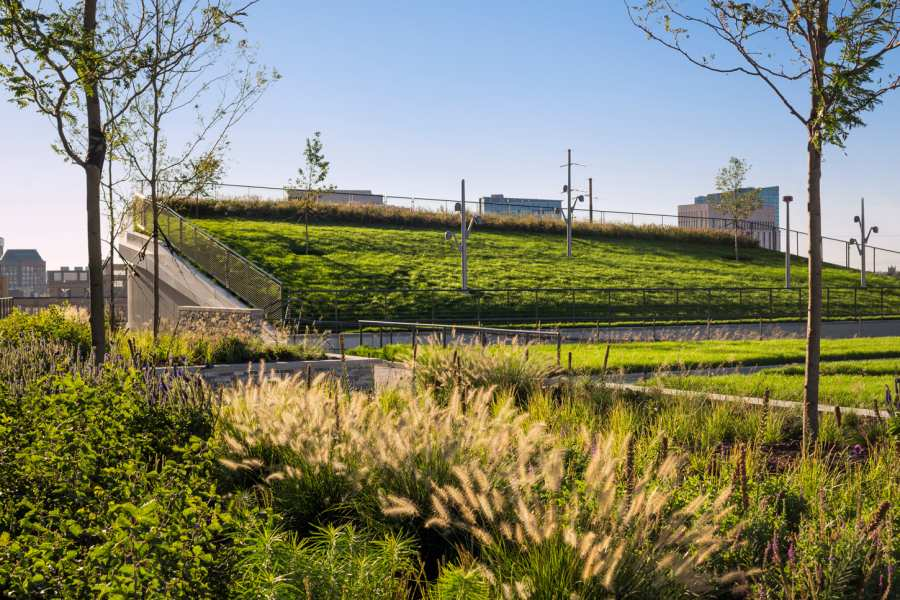 What Exactly Is A Green Roof?