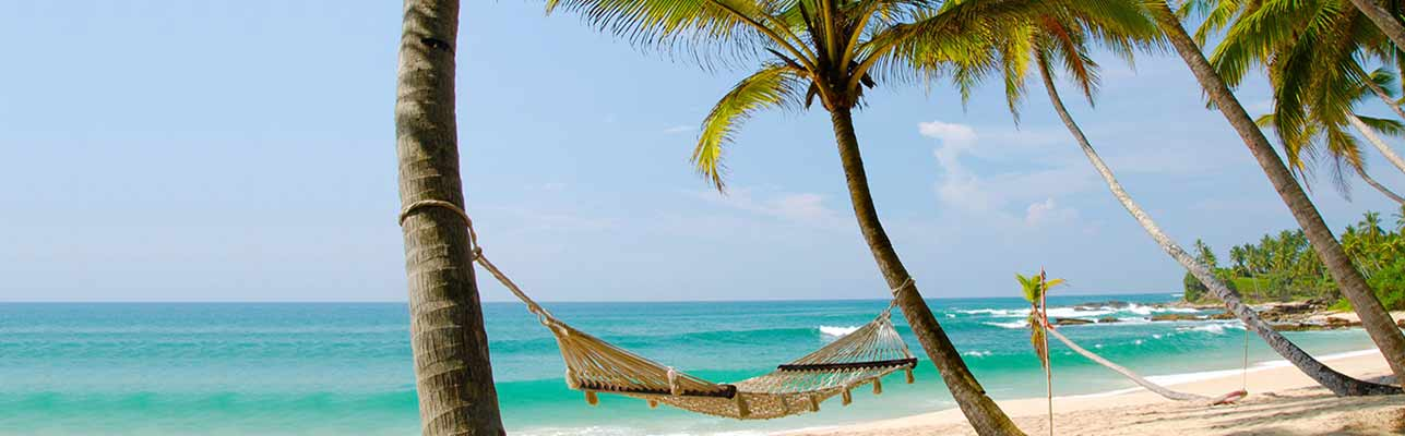 Everything you need to know about South Goa