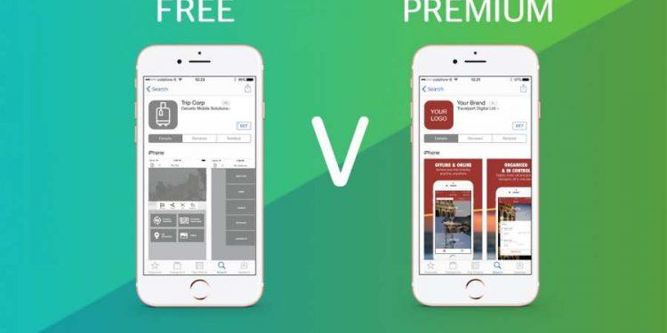 Mobile App Monetization model