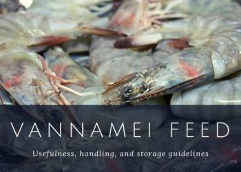 Vannamei feed – Usefulness, handling, and storage guidelines