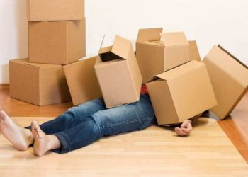 Hire A Removalist At Sunshine Coast For Your Next Re-Location