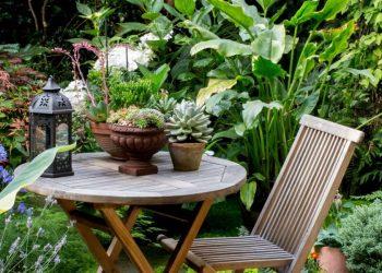 Grow a Spectacular Container Plant Garden